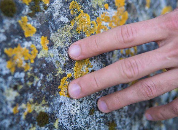 hand running across a textured wall touch sensitivity